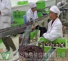 瓶型包装生产线